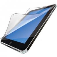 Защитная пленка для iPad (приват фильтр)
