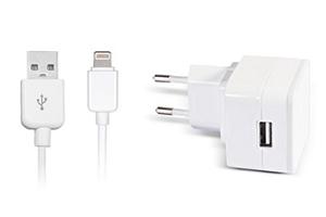 СЗУ USB 2.1 iPad mini/iPhone 5